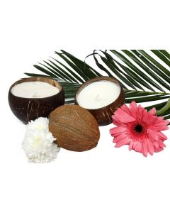 Ivory Musk Soy Wax Candle I Coconut shell Candle (200 gms)